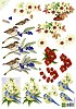 A4 KNIPVEL MATTIE BIRDS & FLOWERS  MB0131
